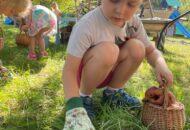Muszelki iPiraci wOgrodzie ekologicznym